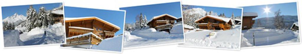 Banner wintersneeuw